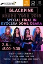 BLACKPINK ARENA TOUR 2018 SPECIAL FINAL IN KYOCERA DOME OSAKA