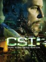 CSI Vegas season 8    8